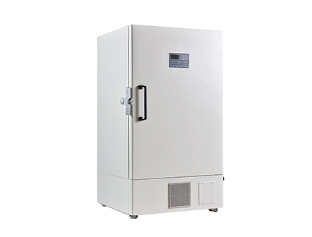 Economic Standing Up 728L Refrigerator Freezer with Self Cascade System